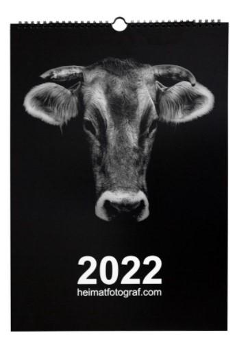 Heimatkalender Kühe