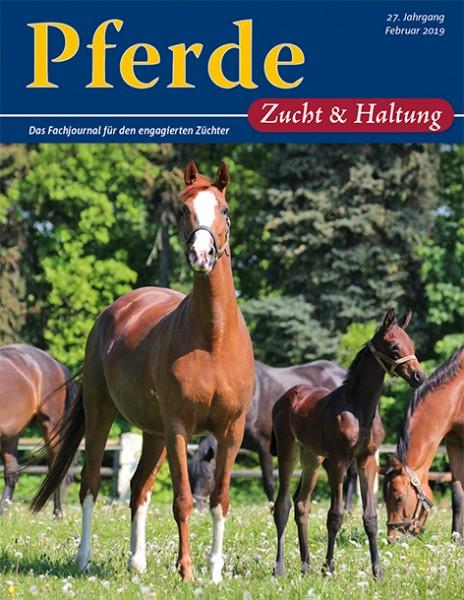 Pferde Zucht und Haltung
